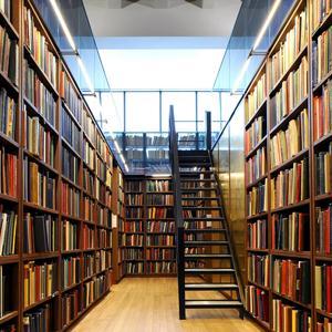 Библиотеки Жердевки
